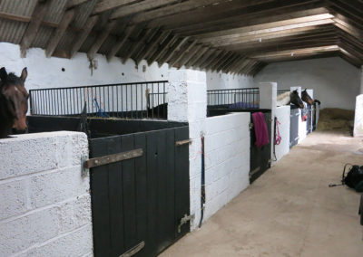 Camp---Stables