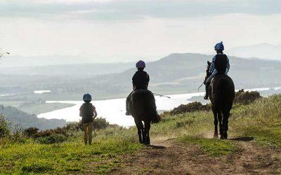 Horse Holidays at Lindores