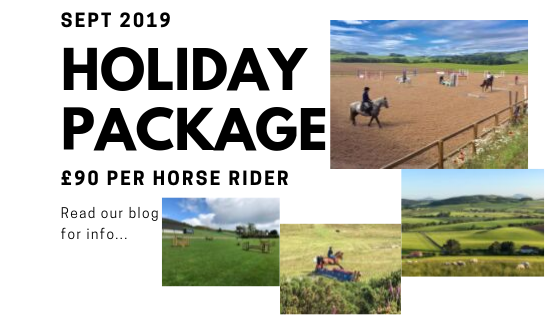 Horse Holiday Friends Package